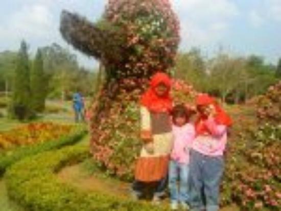 Bebek Cianjur Icefilmsinfo Globolister Aneka Bunga Picture Of Taman Bunga Nusantara Cianjur Tripadvisor
