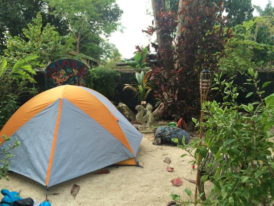 prime camping area - Picture of Everglades International Hostel