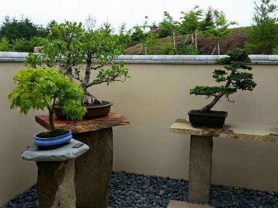 New Japanese Garden - Picture of Frederik Meijer Gardens  Sculpture