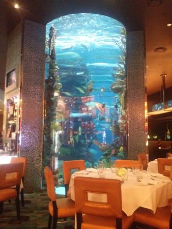 Chart House Restaurant - Picture of Chart House, Las Vegas - TripAdvisor