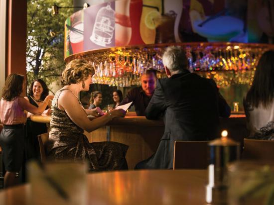 birdcage bar u0026 cafe