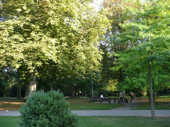 Kurpark Bad Krozingen - Picture of Kurpark Bad Krozingen, Bad - bad krozingen