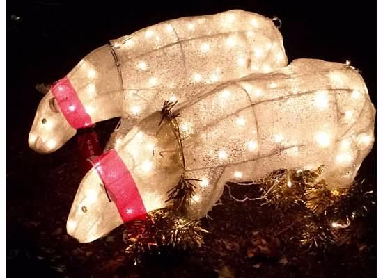 Christmas lights at lilacia park - Picture of Lilacia Park, Lombard