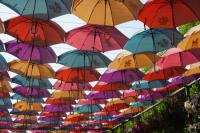 Umbrella Roof - Picture of Dubai Miracle Garden, Dubai ...