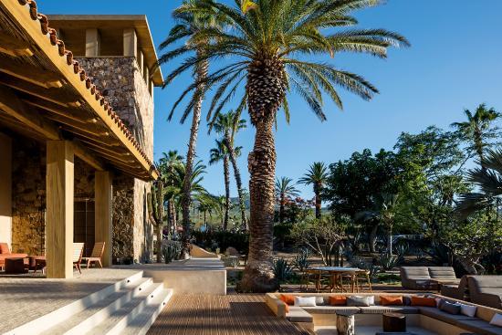 Foto De Toro Latin Kitchen Bar Cabo San Lucas Toro