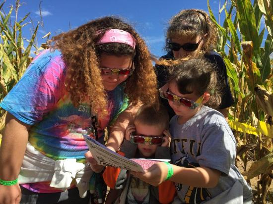 Family fall fun at our giant corn maze - Picture of McPeek\u0027s Mighty