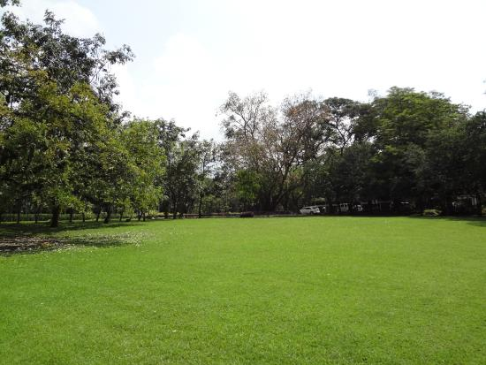 Kebun Taman Purwodadi Photos - Featured Pictures Of Purwodadi, Central