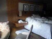 Dog bed - Picture of The Westin at The Woodlands, The ...