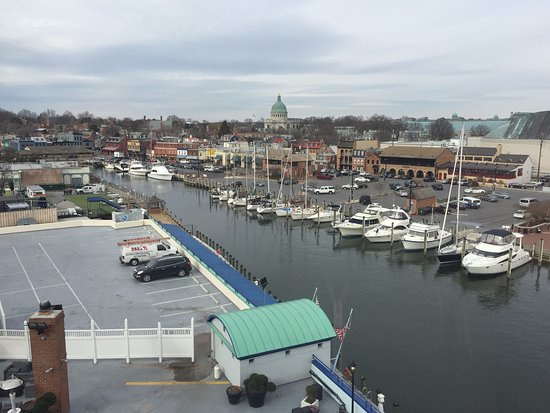 Annapolis Collection 6 Photo1.jpg - Picture Of Annapolis Waterfront Hotel