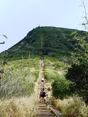 Koko Head Stairs Picture Of Koko Crater Trail Honolulu