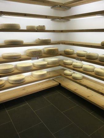 Unhelpful shop assistant - Review of Caws Cenarth Cheese, Cenarth - shop assistan