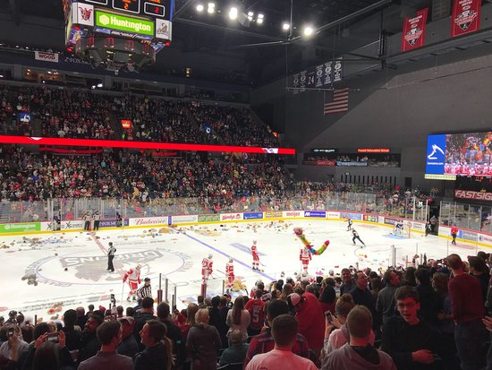 Van Andel Arena, Home Of Grand Rapids Griffins, Grand Rapids