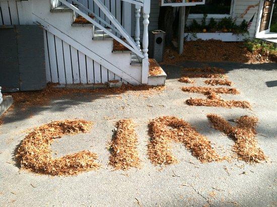 Fall Fun - Picture of Clay Hill Farm, Cape Neddick - TripAdvisor