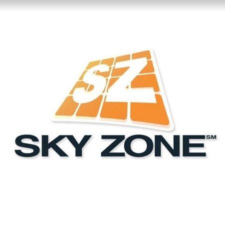 Fun for an hour - Review of Sky Zone, Fredericksburg, VA - TripAdvisor