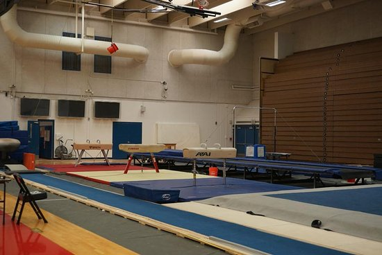 Home to the men\u0027s US Gymnastics team - Picture of Olympic Training