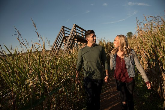 Fall Fun at Fields of Adventure - Picture of Gettysburg