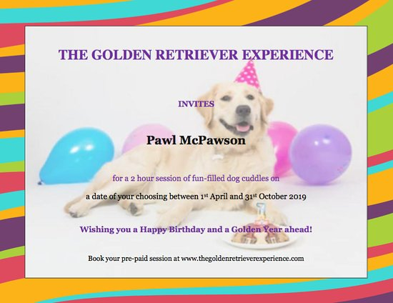 Happy Birthday Gift Certificate - Picture of The Golden Retriever
