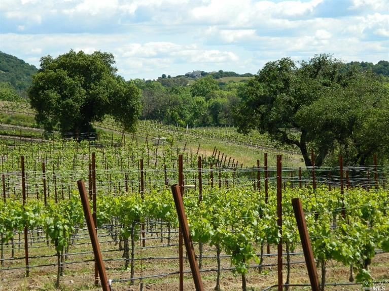 Healdsburg Relaxing Wine Country Farmhouse Has Terrace And