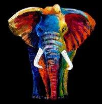 Majestic Elephant Glass Wall Art