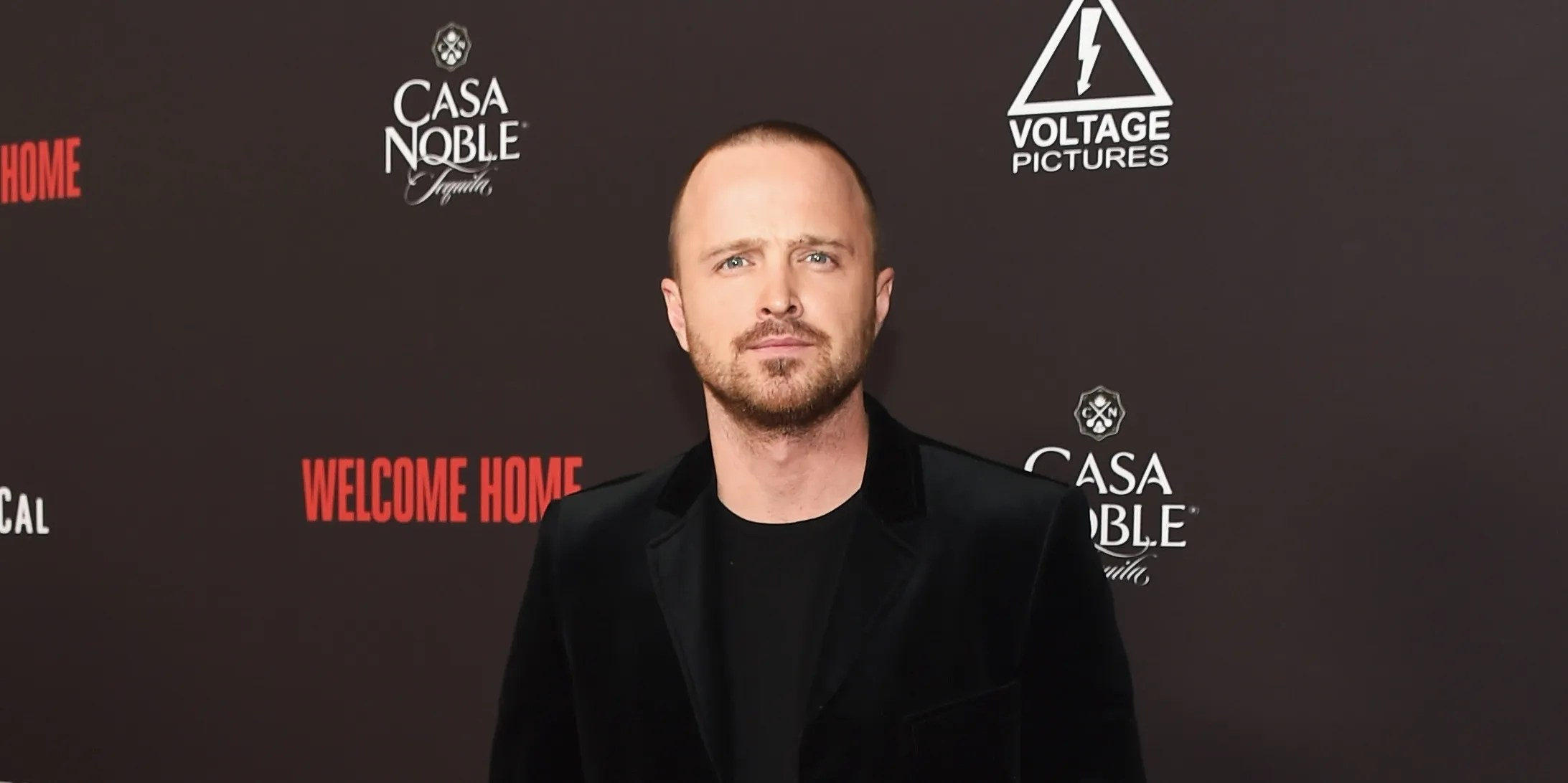 Aaron Paul Says Bojack Horseman Helped Fans Come Out As Asexual - Netflix Camino A Casa