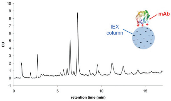 Chromatographic Characterization of Biopharmaceuticals Recent - cation exchange chromatography