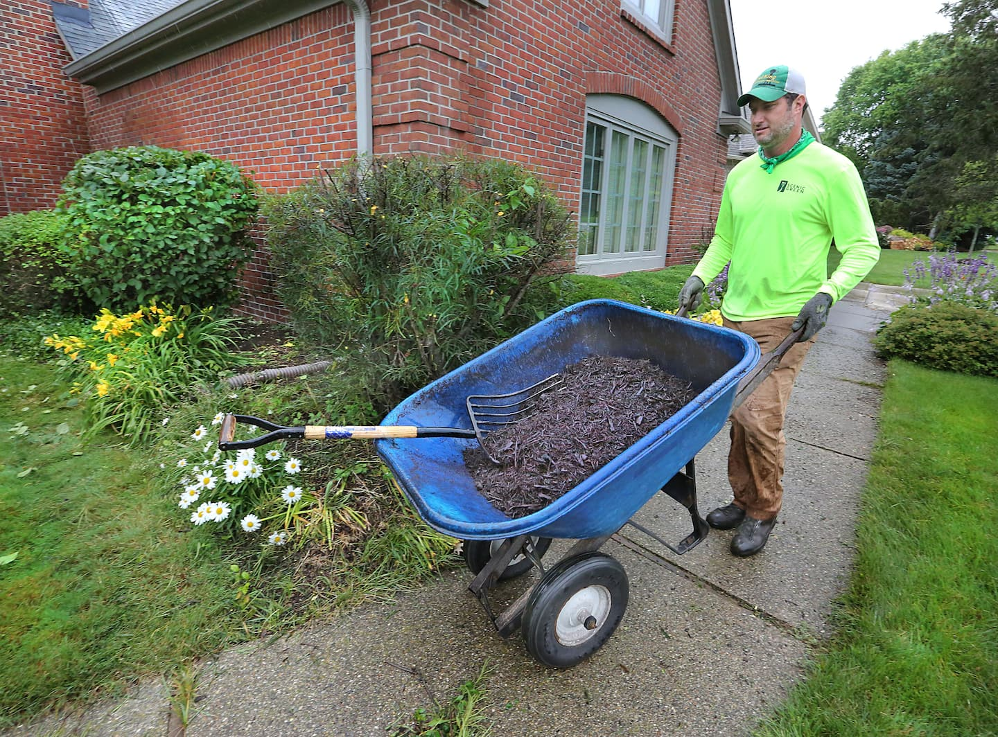 Black Bark Mulch Is Colored Or Dyed Mulch Bad For My Plants Angie S List