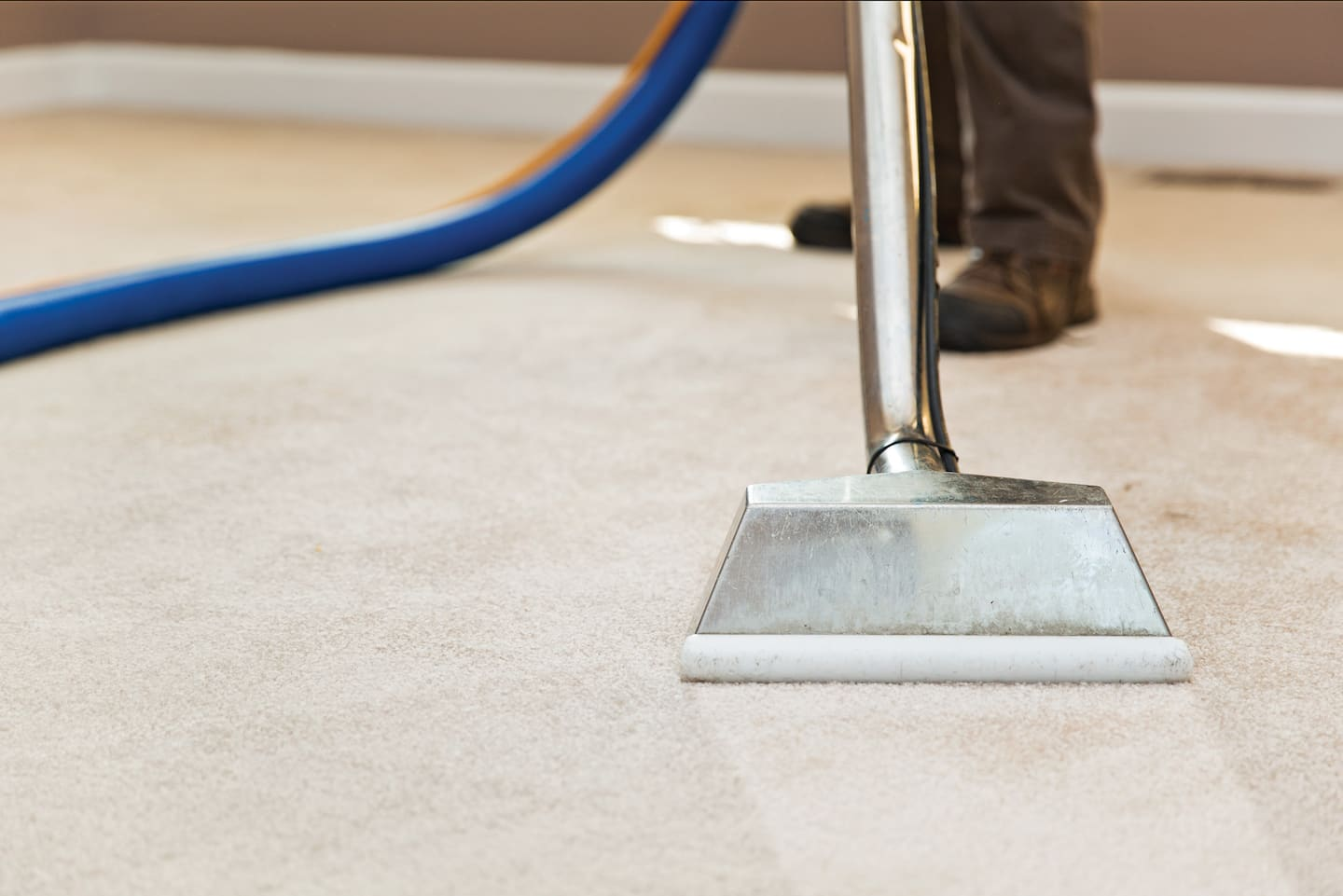 Carpet Cleaning What Are Average Carpet Cleaning Prices Angie S List