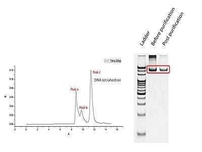 HPLC Advances for Better Separations Biocompare
