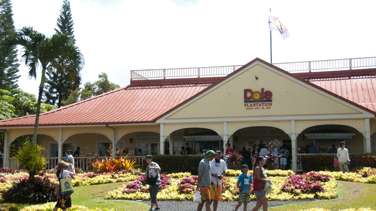 Hawaii S Dole Plantation Diversifies Attractions To Remain A Big Tourist Draw Slideshow Pacific Business News
