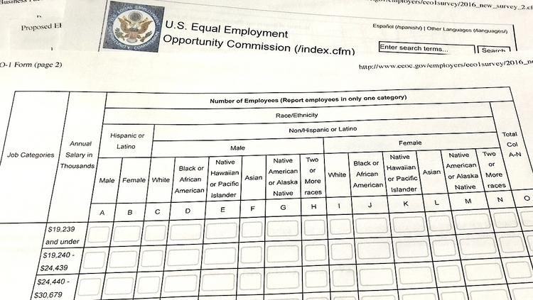 EEOC\u0027s regulation requiring employers to report pay by sex and race