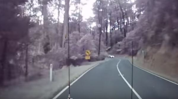 Driver gets lucky when storm fells tree