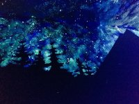 This gorgeous galaxy ceiling is invisible in bright light ...