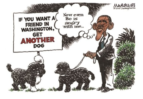 Jimmy Margulies - The Record of Hackensack, NJ - Obama dogs Bo and Sunny color - English - Obama dogs, Bo, Sunny, presidential pets