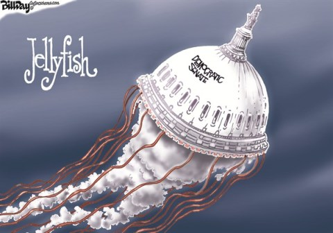 Bill Day - Cagle Cartoons - Jellyfish - English - Harry Reid, Senate, jellyfish, spineless, Democratic Senate