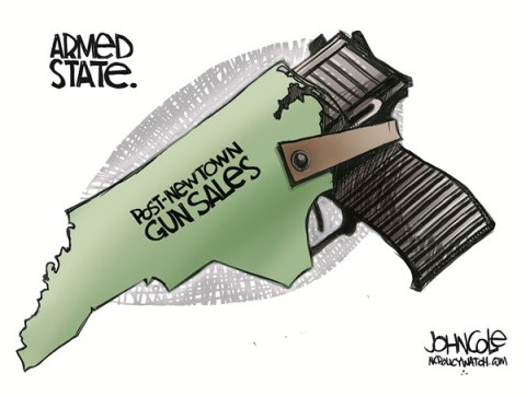 John Cole - ncpolicywatch.com - LOCAL NC -- NC GUN SALES color - English - north carolina, gun sales, guns, nra, newtown, shootings