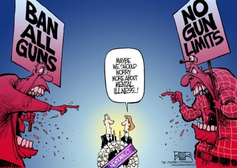Nate Beeler - The Columbus Dispatch - Post-Shooting Debate COLOR - English - newtown,connecticut,shady hook,elementary,massacre,shooting,children,guns,gun,control,ban,semiautomatic,assault weapon,nra,violence,crime,deaths,adam lanza,politics,mental illness