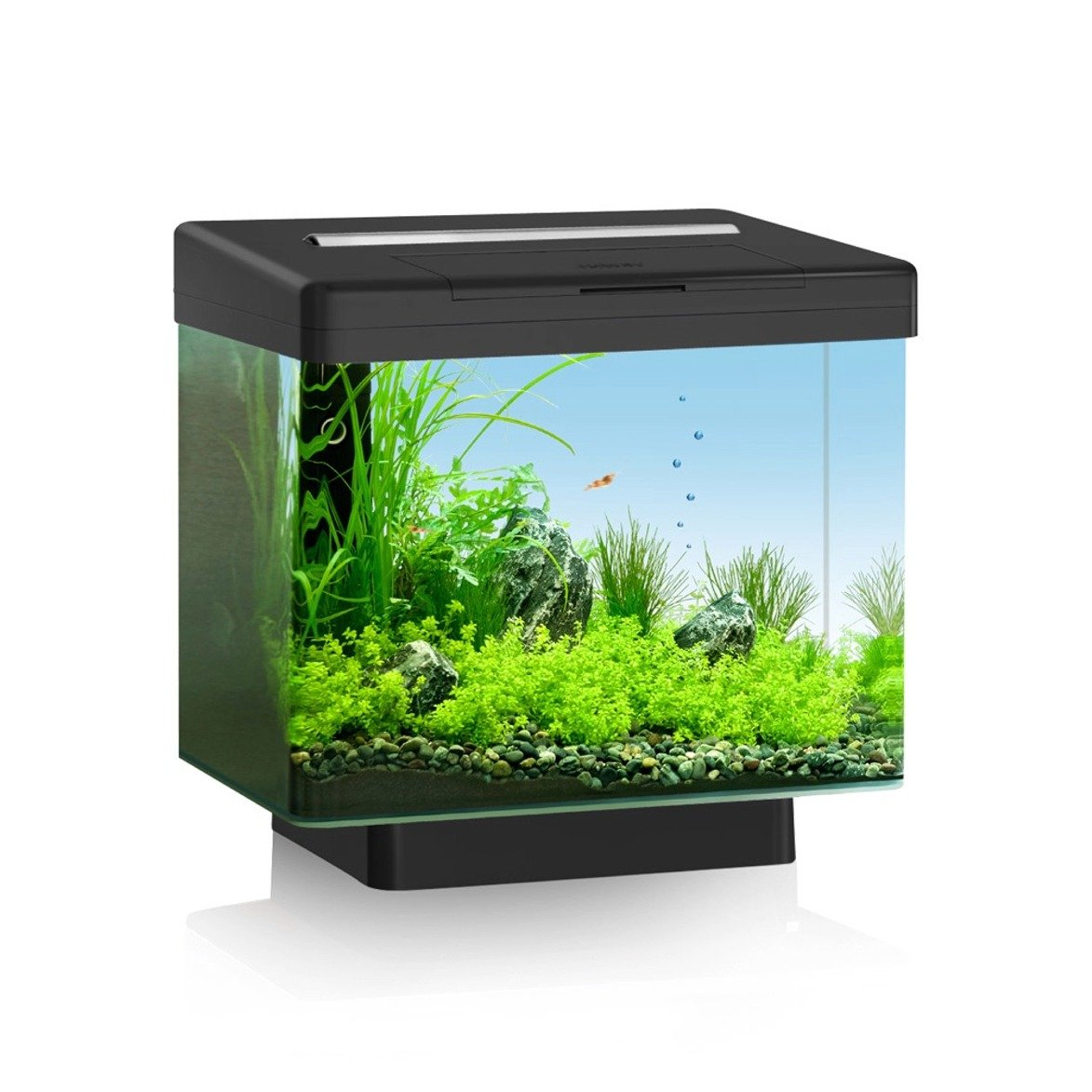 Eclairage Led Dennerle Aquarium 30l Mundu Fr