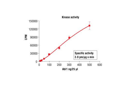 CST - HTScan® Abl1 Kinase Assay Kit