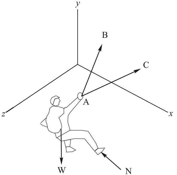 body diagram statics