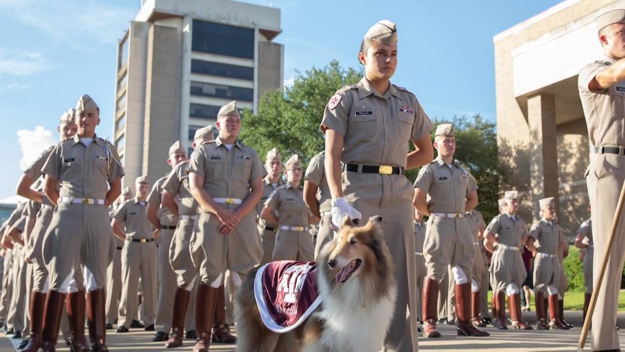 Reveill Woman S Best Friend A Day On Texas A M Campus With Reveille S