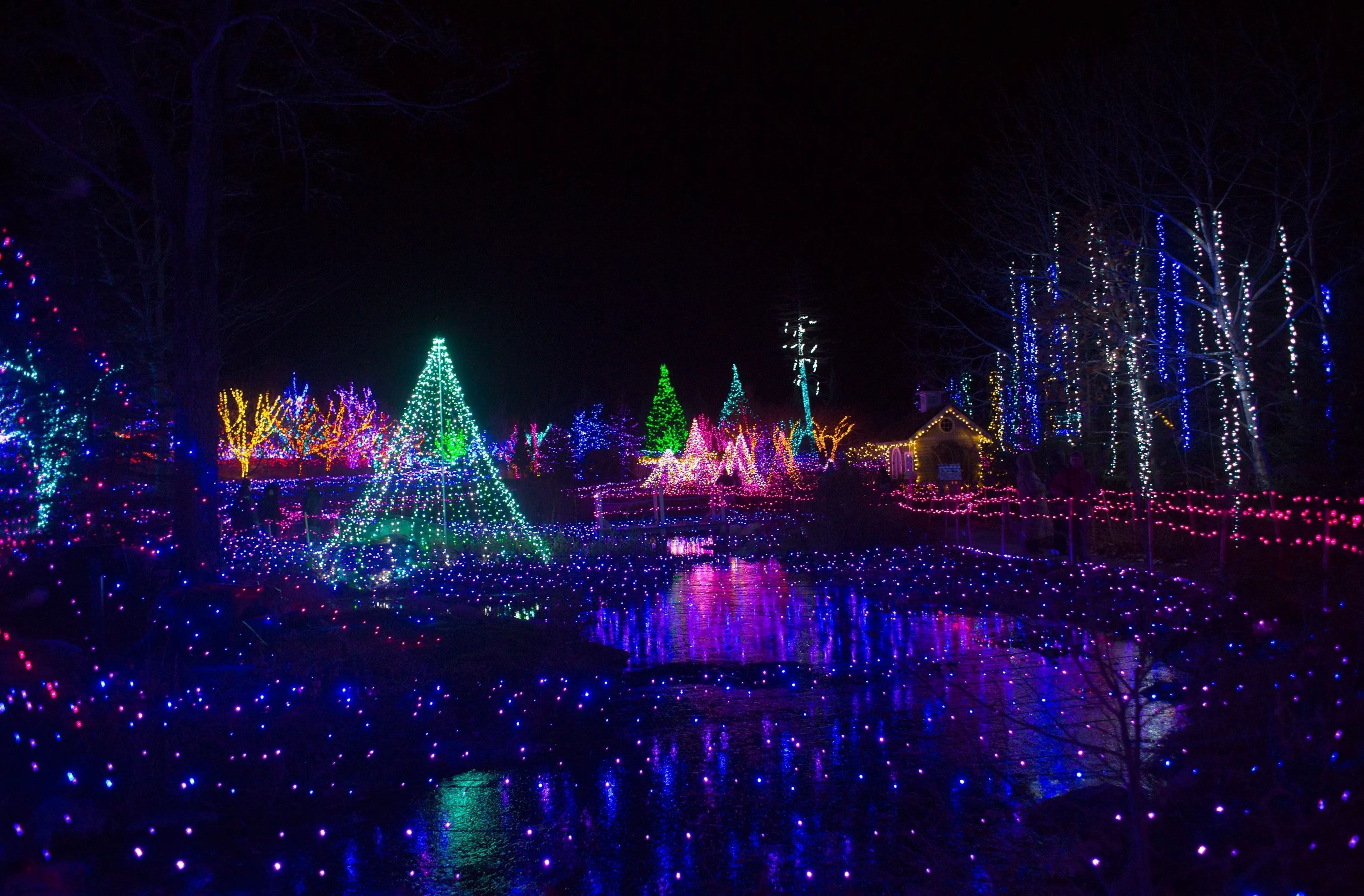 Where To See The World S Best Christmas Lights Condé Nast Traveler