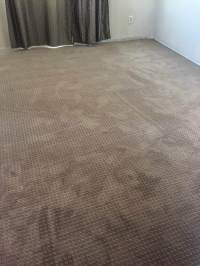 Mohawk Carpet Reviews Smartstrand - Carpet Vidalondon