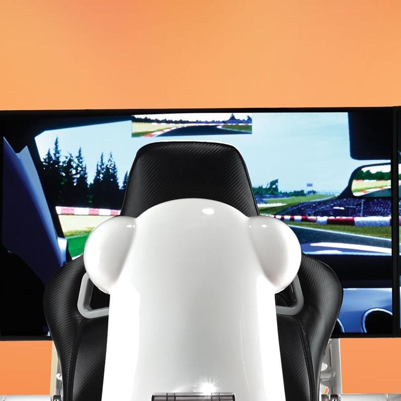 Racing Sim (4)