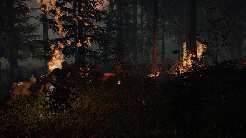 Forest_6