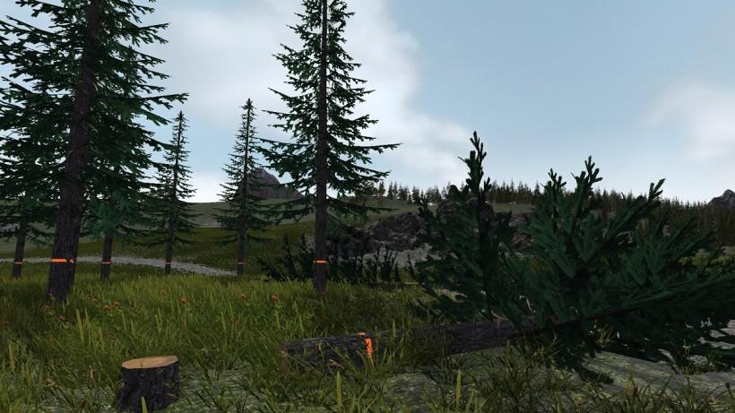 Lumberjack (1)