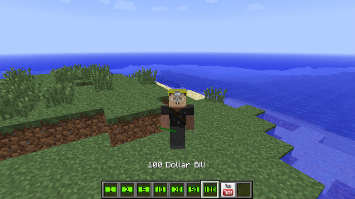 Minecraft moneyhat