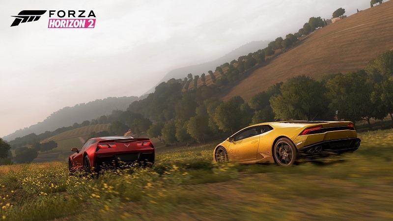Forza Horizon 2 (10)