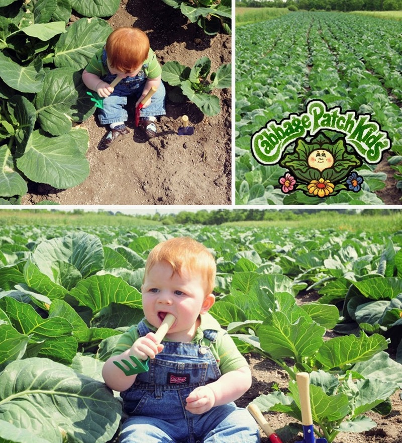 cabbage patch3