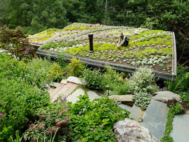 6 expert ways to save on your garden renovation - CultureMap Austin - designing your garden