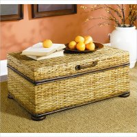 Hidden Treasures Woven Rattan Trunk Coffee Table in Light ...